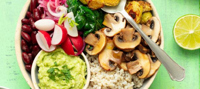 Los mejores Blogs Veganos para reducir consumo de carne